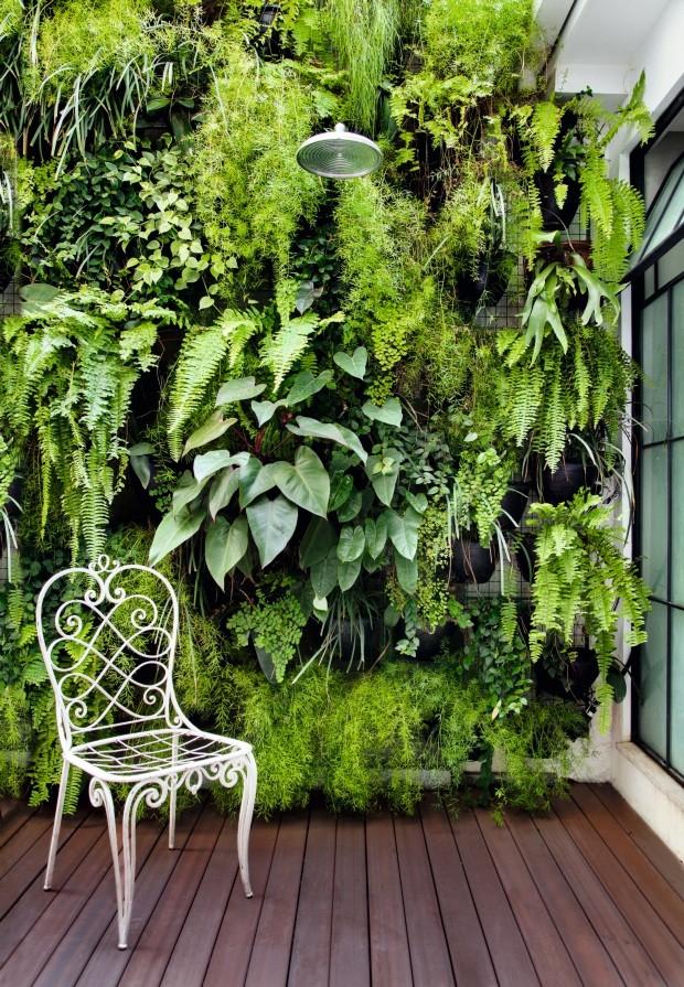 parede verde quintal pequeno